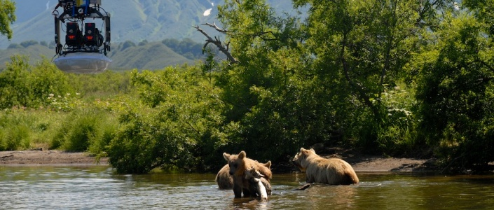 Russie- Kamchatka Terre des Ours